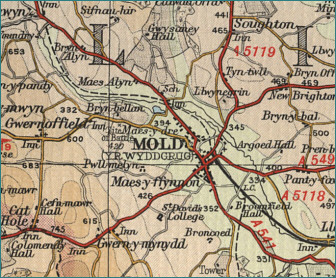 Mold Map